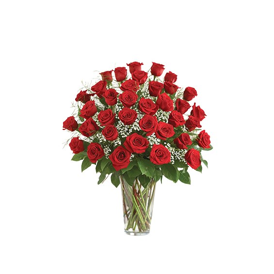 Classic-three-dozen-roses-in-a-vase
