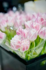 sympathy_bouquet_of_pink_tulips